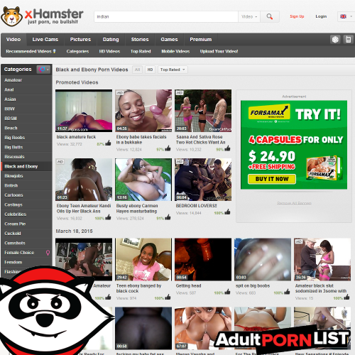 """hampster porn site Sep 2013  These sites changed what we eat, how we vote, and the ways we kill time  A  remix of """"The Hampster Dance Song"""" charted in countries around the world,   He quickly outfitted Sex dot com with a slew of porn ads that began."""